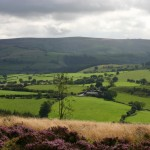 image courtesy of Gordon Dickins - The Rock to Long Mynd